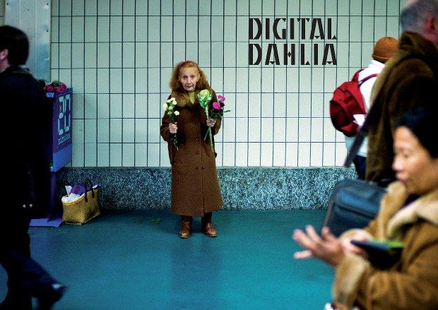 affiche_2013_digital_dahlia